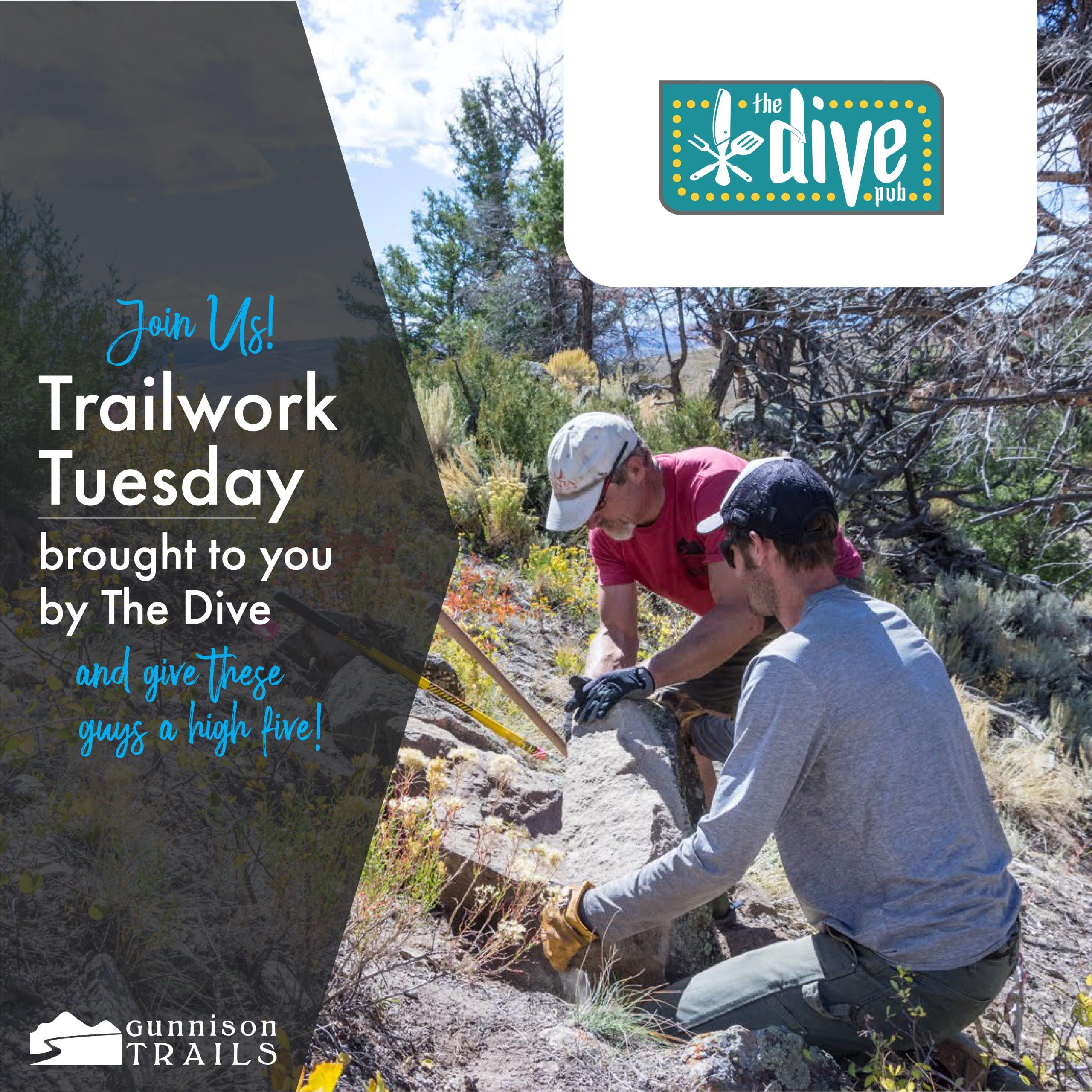 Trail Work Tuesday – Good Tree