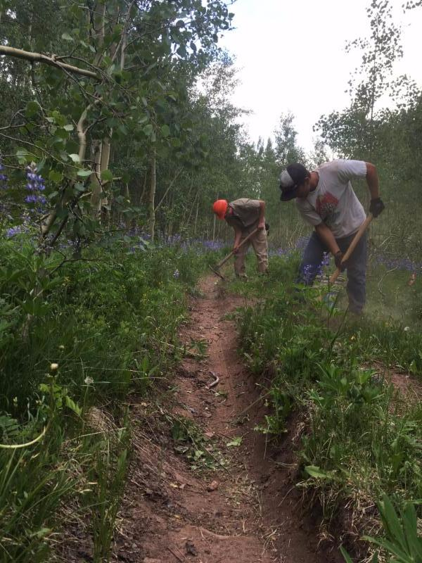 The Gunnison Trails' Crew working alongside our brethren from the North, the Crested Butte Conservation Corp.
